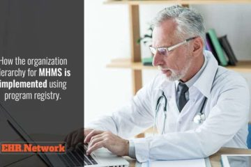 How the organization hierarchy for MHMS is implemented using program registry
